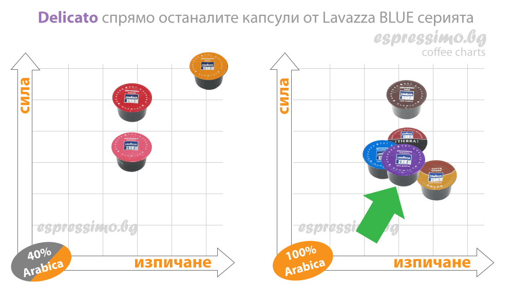 Grafika-LB-Delicato