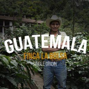 Guatemala Finca La Bolsa Specialty Coffee